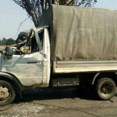 На Донбассе дерево раздавило кабину авто с людьми (фото)