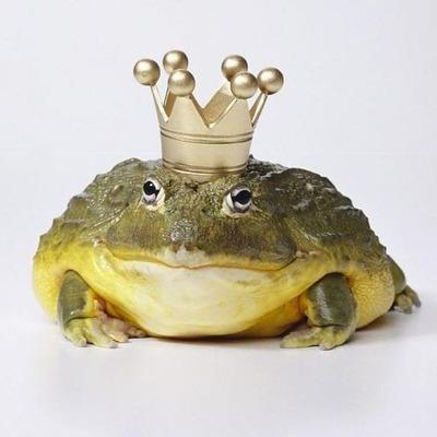 В США поймали 6-килограммовую «царевну-лягушку» (фото)