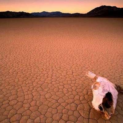 Изменение климата приведет к преждевременной смерти