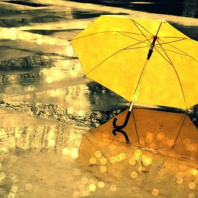 Сегодня Украину зальет дождями