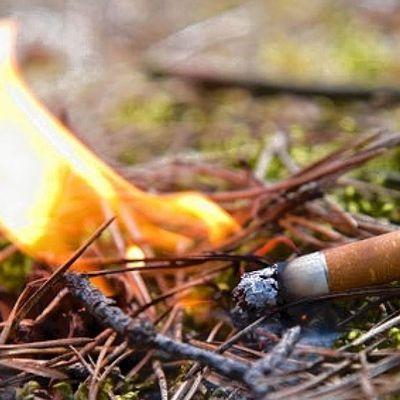 В Черногории турист, который заблудился, случайно поджег лес
