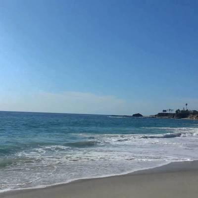 В США парень пытаясь избежать ареста прыгнул в океан, где его подстерегала акула (видео)