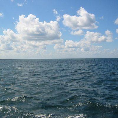 Рыбак поймал на удочку огромного монстра (фото)