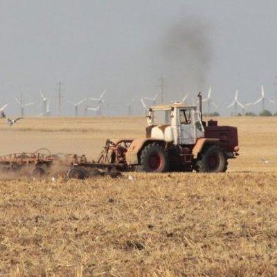 Смертельный урожай поспел на полях Украины (фото)
