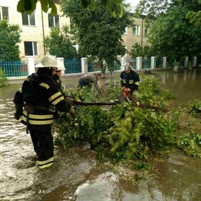 В результате непогоды обесточены 130 населенных пунктов в 8 областях Украины
