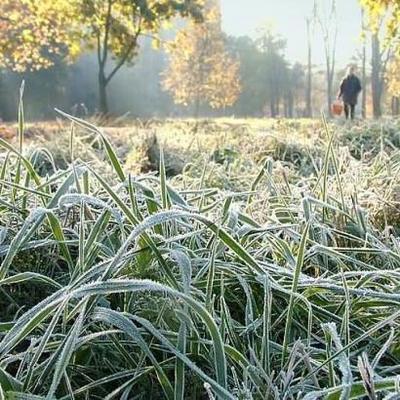 Синоптики предупреждают о заморозках в Украине