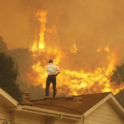 Появилось снятое с воздуха видео ужасных последствий лесных пожаров в США (видео)
