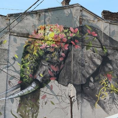 В Одессе художники с мировым именем создают серию муралов
