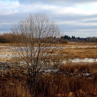 В Украину пришли ночные морозы: погода на сегодня