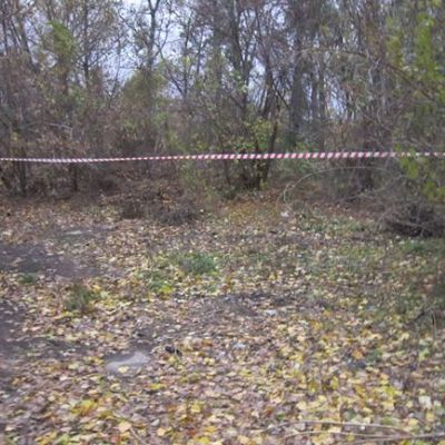 На Кировоградщине молодой человек изнасиловал девушку