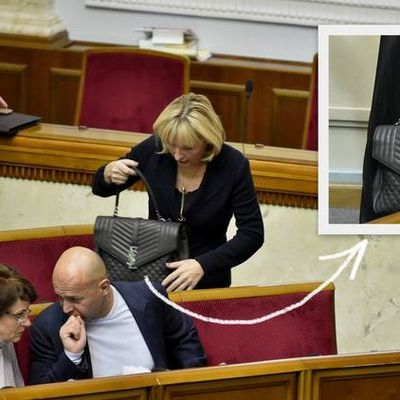 Ирина Луценко продемонстрировала в Раде сумку за 74 тис. грн.
