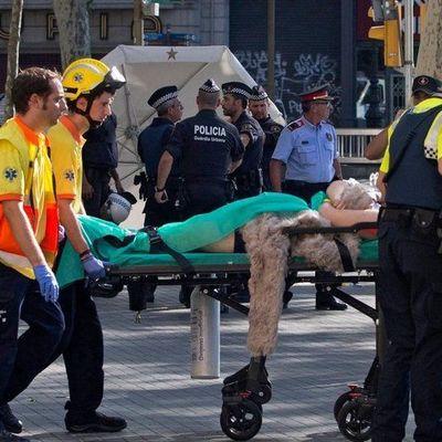 Из-за теракта в Египте погибли 85 человек