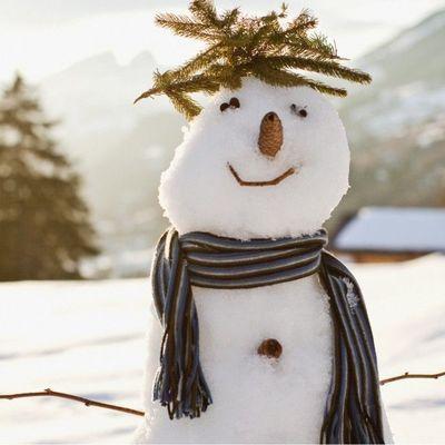 Синоптики рассказали, что зима в Украине будет малоснежная и холодная