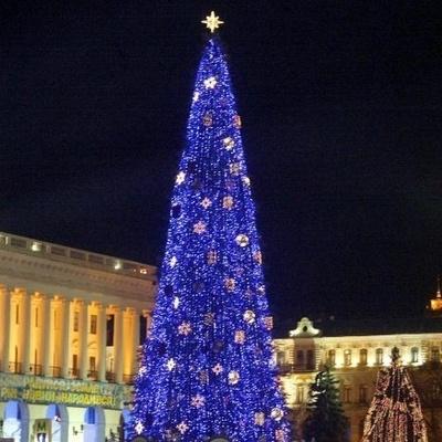 Киевлянам рассказали, на каких улицах установят новогодние елки