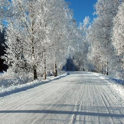 В Киев пришла метеорологическая зима