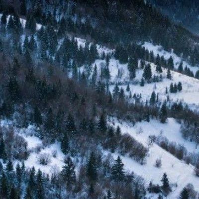 В Карпатах предупреждают о лавинной опасности