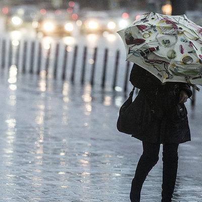 Сегодня в Украине объявлено штормовое предупреждение из-за ветра