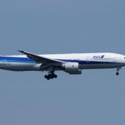 Пассажир, который перепутал рейс, стал причиной возвращения самолета