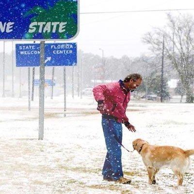 Погода сходит с ума: впервые за 28 лет во Флориде выпал снег