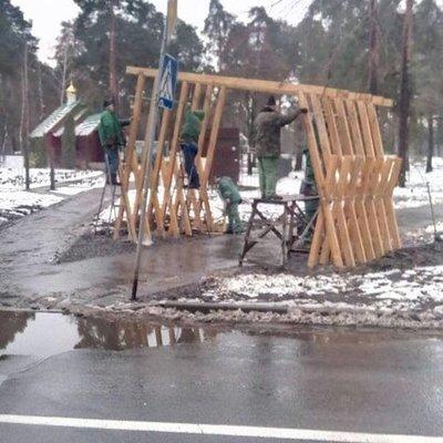 В Киеве хулиганы спилили молодые сосны в парке