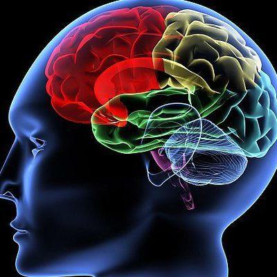 Ученые обнаружили вирус, который борется с раком мозга