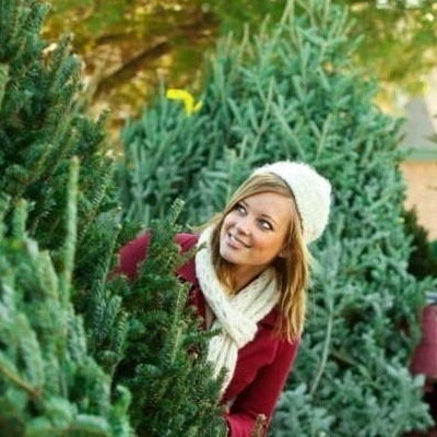 В Киеве заработают пункты приема новогодних елок