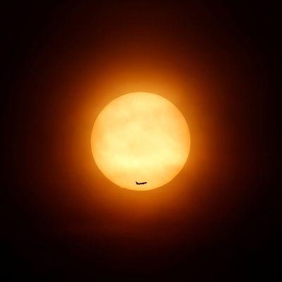Ученые предсказали скорое затухание Солнца