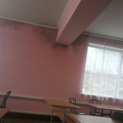 В Николаевской области на детей в школе обрушился потолок (видео)