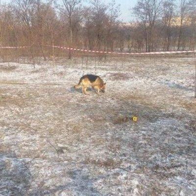 В Кривом Роге собака откопала тело ребенка
