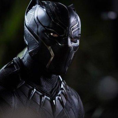 В США после выхода фильма «Черная пантера» из приютов разобрали черных кошек