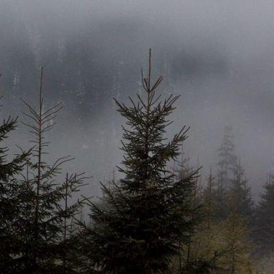 В Карпатах потерялся турист из Киева