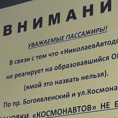 Из-за ямы водитель маршрутки «отменил» остановку в Николаеве