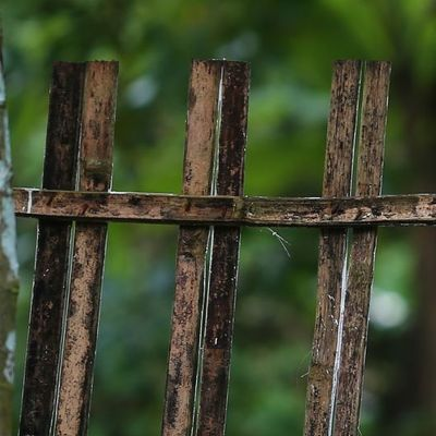 На Львовщине мужчина умер прямо на заборе