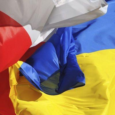 Климкин прокомментировал сожжение польского флага в Киеве