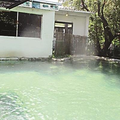 Пьяный мужчина прыгнул в бассейн с тремя крокодилами и выжил