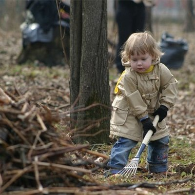 Киевлян просят присоединиться к уборке парков