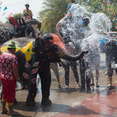 В Таиланде парадом слонов отметили Новый год