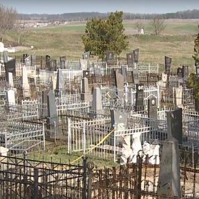 Под Винницей мародеры раскапывали могилы жертв Холокоста ради золота (видео)