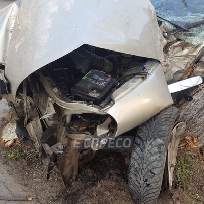 На Подоле авто врезалось в остановку и «сбило» 2 дерева (фото)