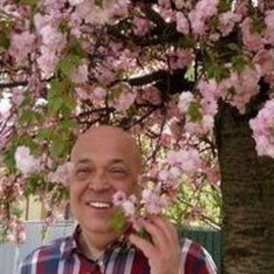 На фоне цветущих сакур в Ужгороде Москаль в «сакурной» рубашке похвастался фото