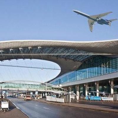 В московском аэропорту женщина с собачкой случайно уехала в багаж