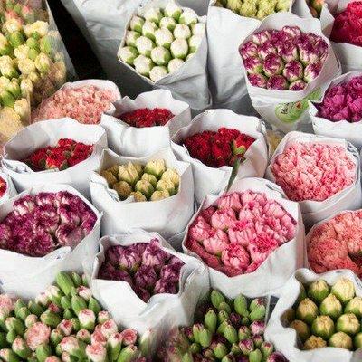 Весенняя выставка в Киеве: на Певческом поле высадили 250 тыс. цветов (видео)