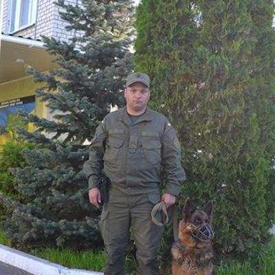 Служебная собака нашла пропавшую девочку на Николаевщине, которая хотела совершить самоубийство