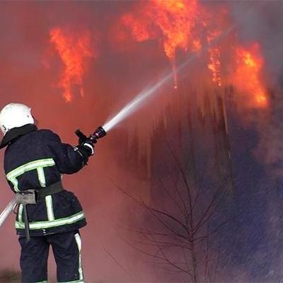 В столичном Гидропарке пожар