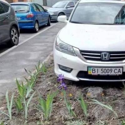 В Полтаве герой парковки наехал на мужчину, который сажал цветы на газоне