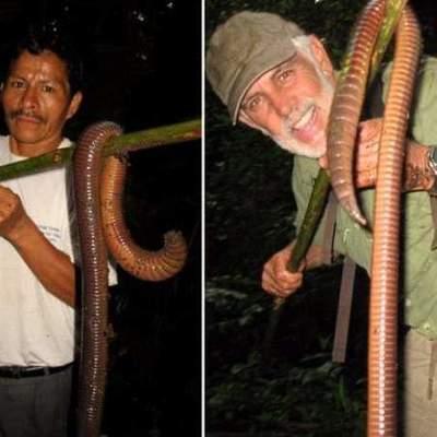 Десятиметровые черви все чаще вылазят из-под земли в Японии