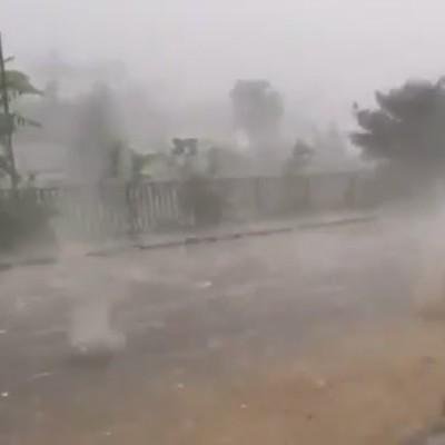 Появилось видео мощного ливня с градом, который пронесся по Закарпатью