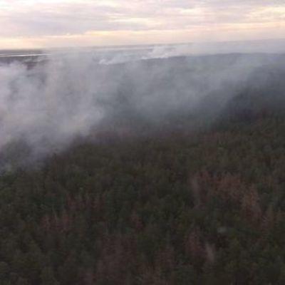 Пожар в Чернобыле: радиационный фон в Киеве в пределах нормы