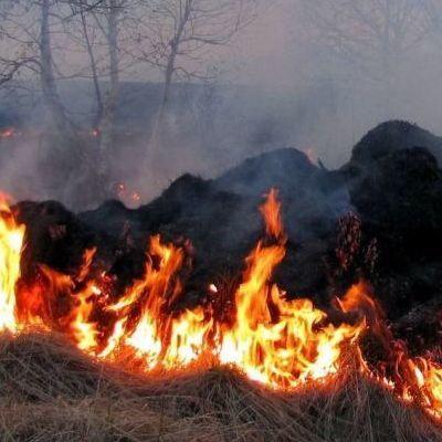 Может охватить огнем: Украине объявили наивысший уровень пожарной опасности
