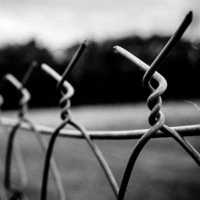 Порошенко с Путиным обсудили вопросы обмена заключенных
